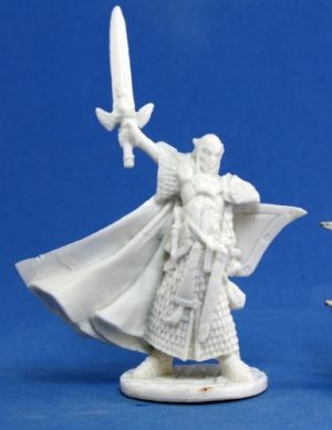 77044_Turanil, Male Elf Paladin