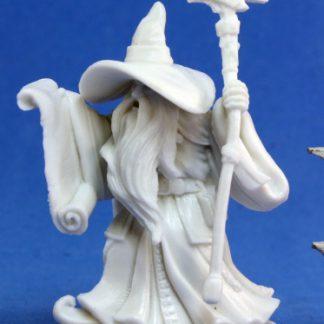 Galladon, Male Wizard 77054