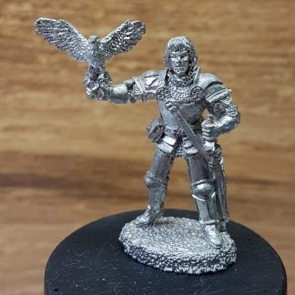 02495 Sir Malbeth Blackhawk 1