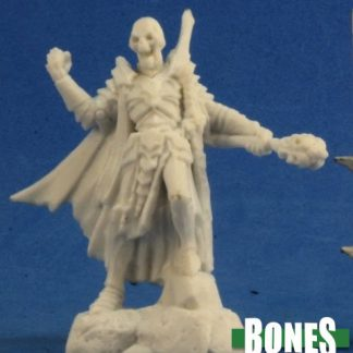 Skeleton Champion Reaper Miniatures