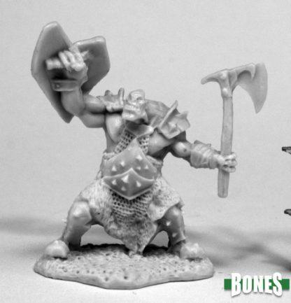 77430_Orc Slayer (axe & Shield)