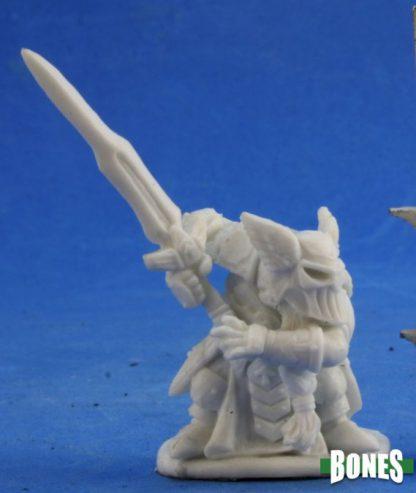 Logrini Battlefury Dwarf Paladin 77397
