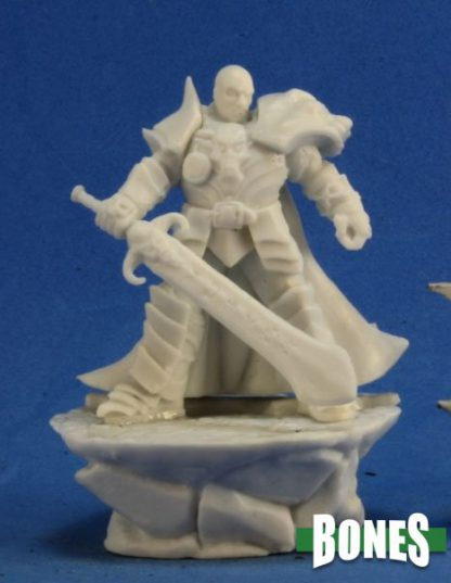 Reaper Miniatures Nederland Male Antipaladin