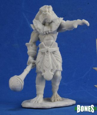 Reaper Miniatures Nederland Avatar of Sokar