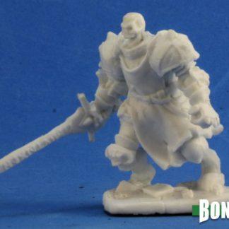 Reaper Miniatures Nederland Barrow Warden 1