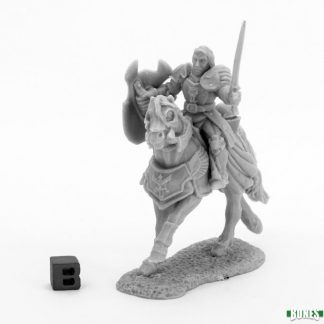 Reaper Miniatures Nederland Sir Danel