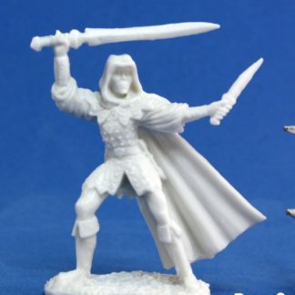 Reaper Miniatures Nederland 77030_Danar, Male Assassin