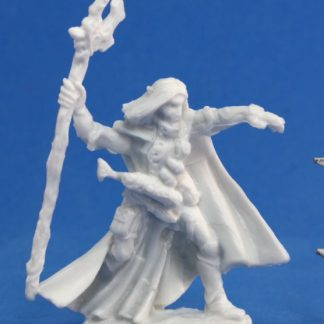 Reaper Miniatures Nederland 77092_Elquin, High Elf Adventurer