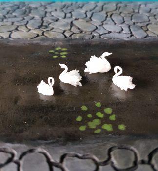 Zwanen - Swan Scenery en Zo
