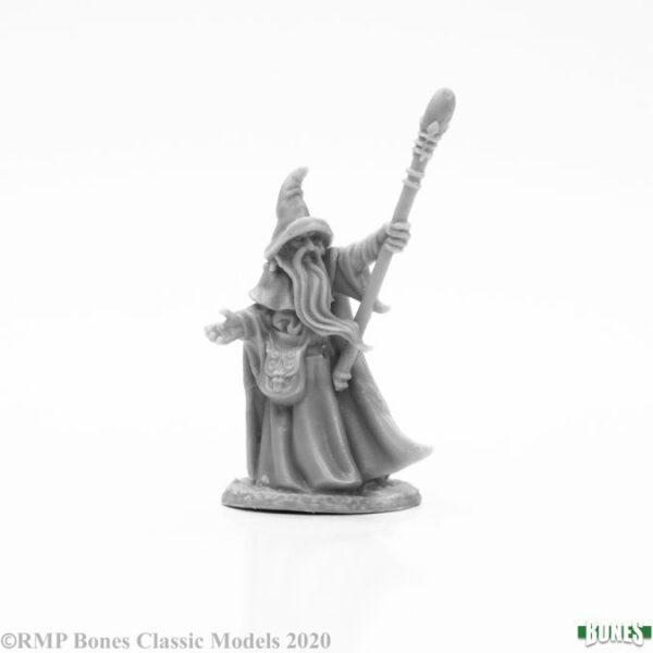 Reaper Miniatures Arakus Landarzad, Wizard 77664