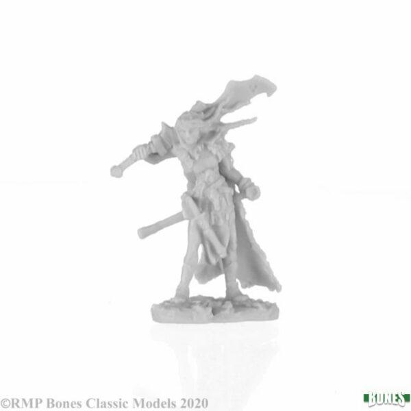 Talnyth, Female Elf Barbarian 77740